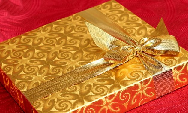 The Christmas Gift | A Short Story By Catherine Salgado
