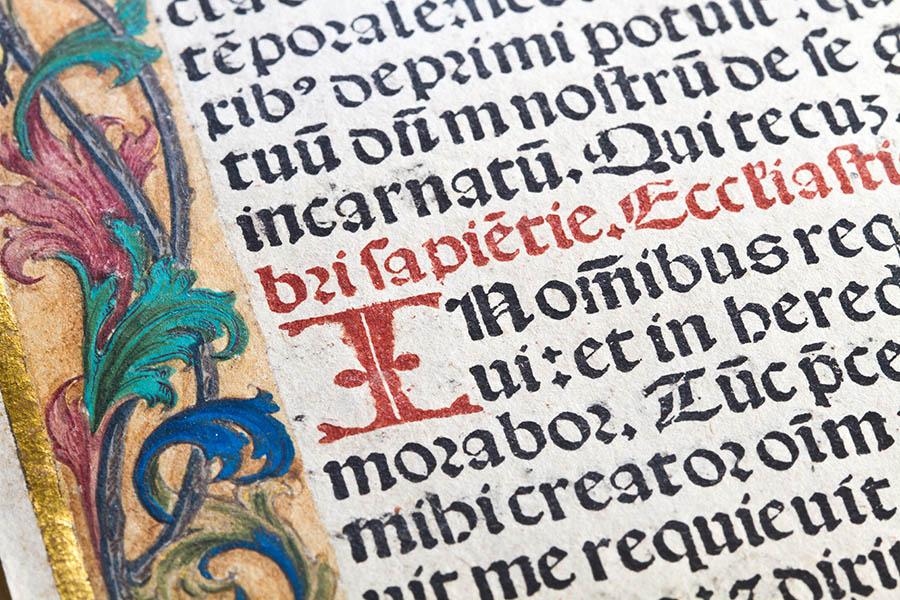 Latin: An Alive Language  | An Essay by Anna Milinovich